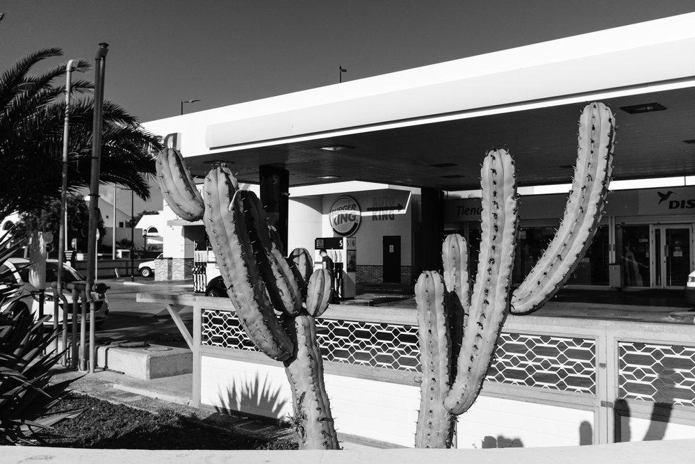 Desert Gas.jpg