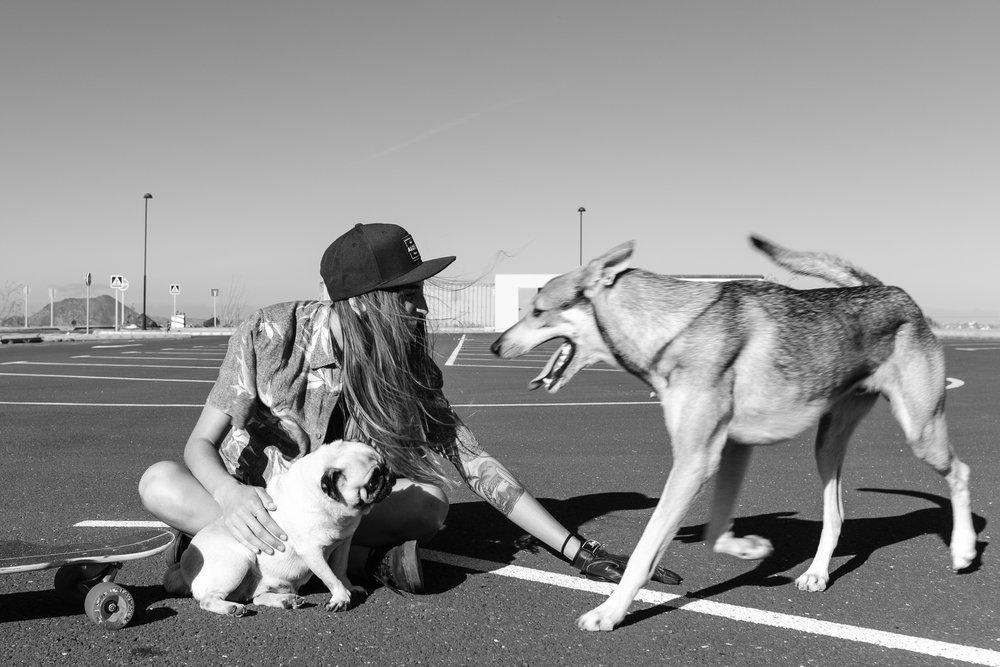 Dog Person.jpg