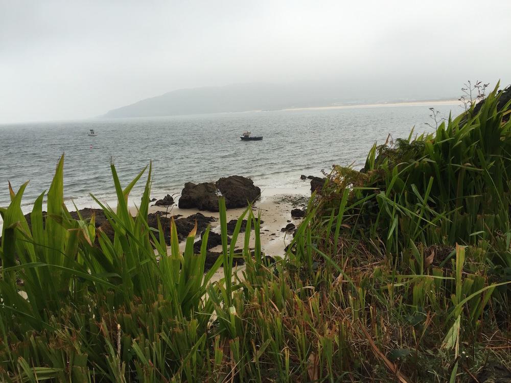 sea-mist.jpg