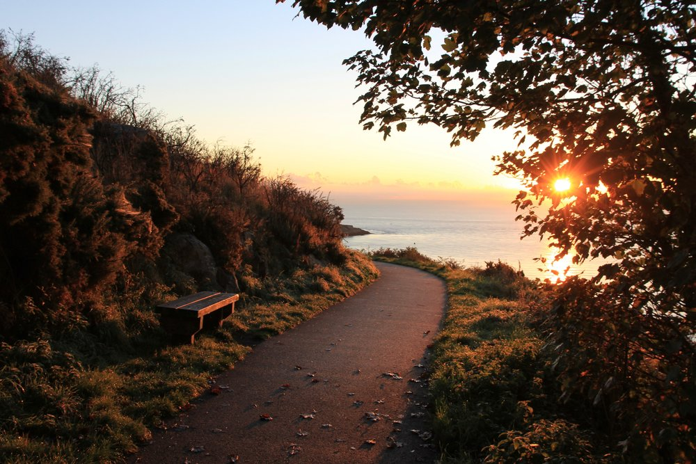 The Killiney walk at sunrise