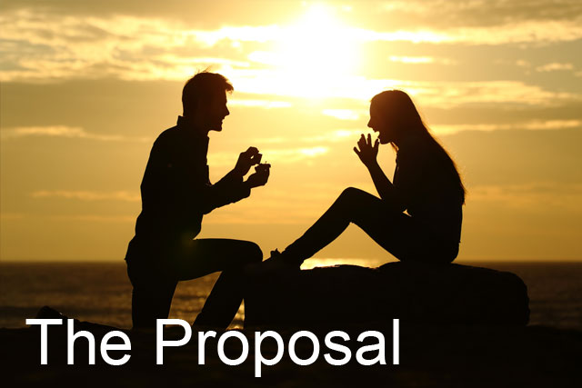 the-proposal.jpg