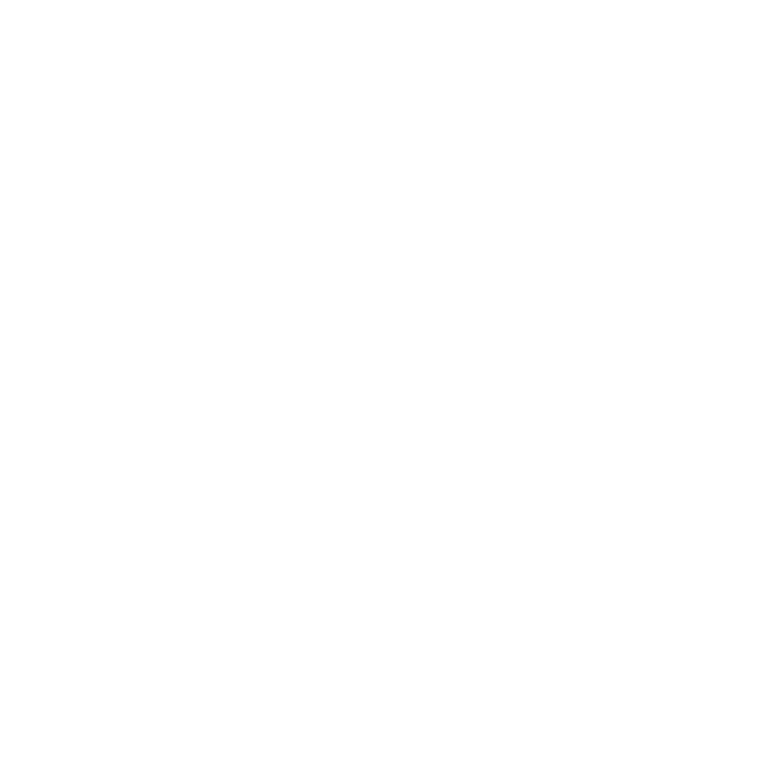 Bright Shot Photography