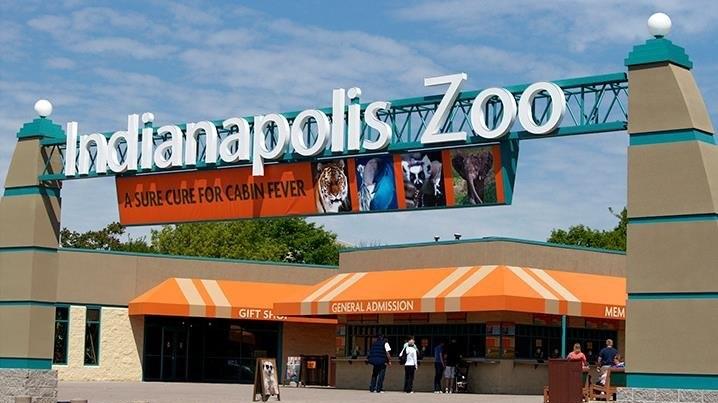 zoo indianapolis.jpg
