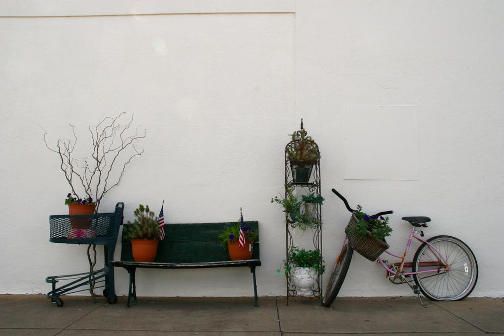 Street - bike plants.jpg
