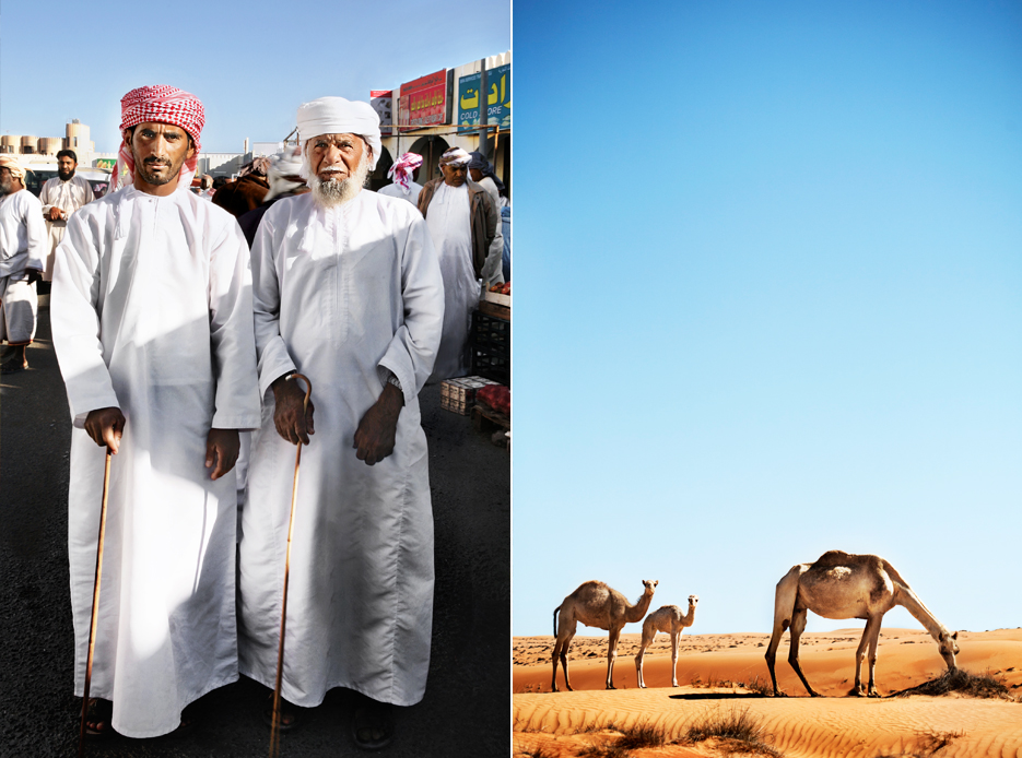 Caitlin Mills Photography_Camels Middle East.jpg