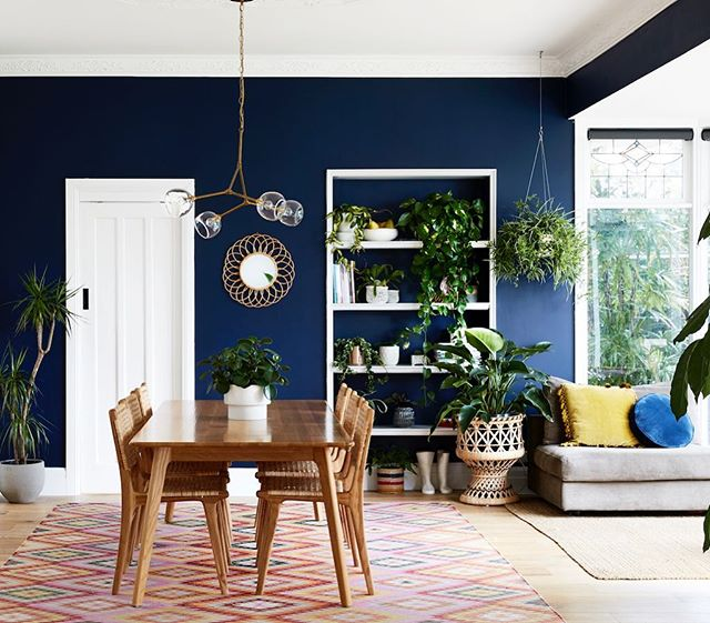This seventies-chic home of Marita McCausland featured on @thedesignfiles is 🙌  filled with all the leafy goodness from @intothewild_plants styling by @annieportelli 📷 @caitlinmillsphotography #home #interiors #lifestyle #interiorphotography #plants #greenery #blue