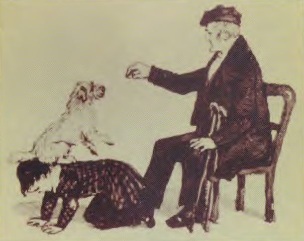 Stupid pet tricks, Clerk Maxwell edition