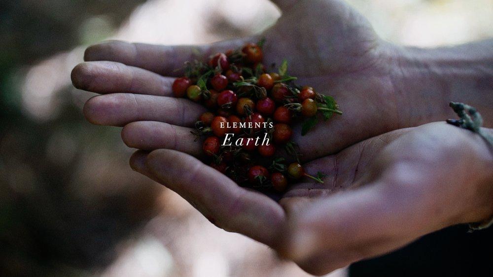 Earth_2018_4.jpg