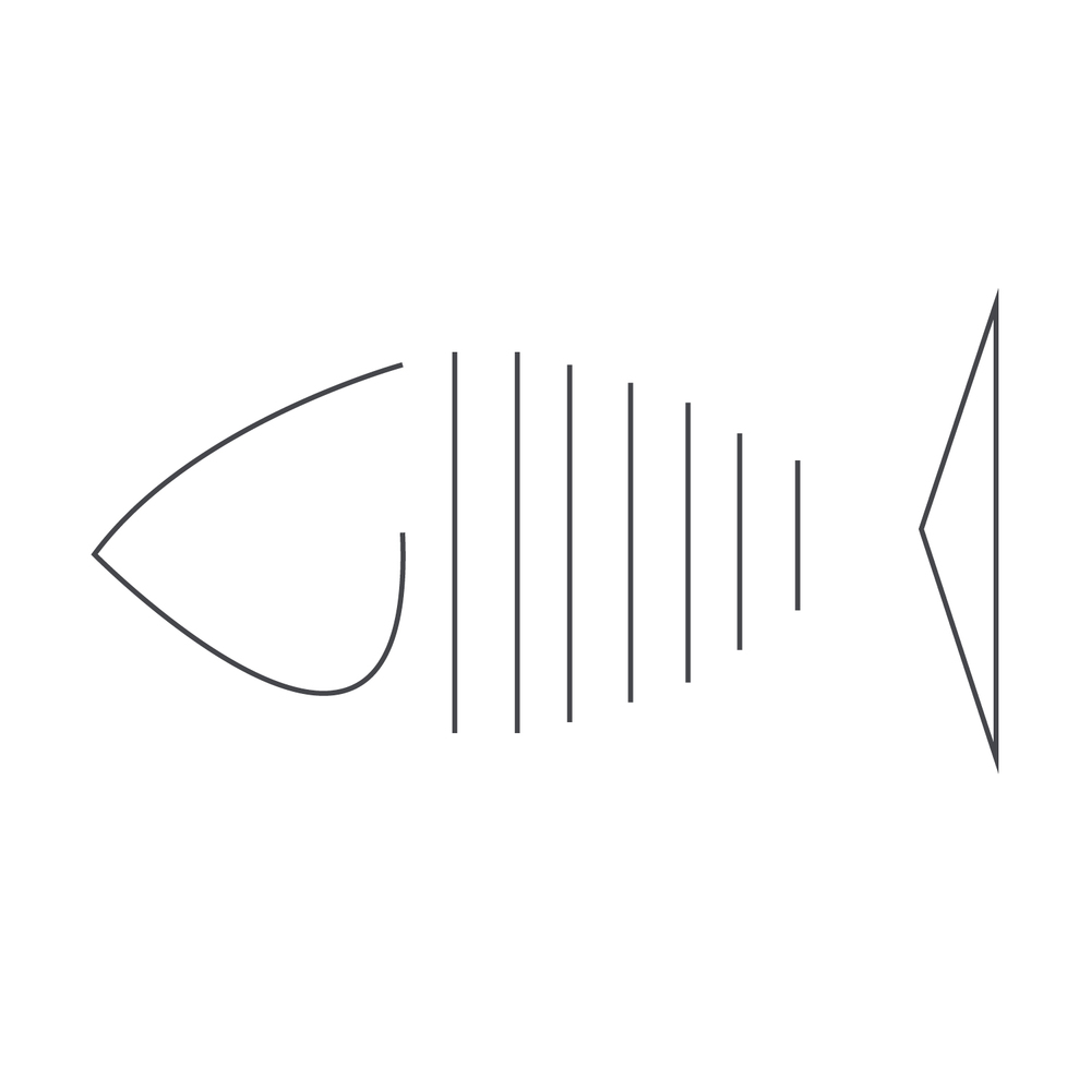 Fish65.jpg
