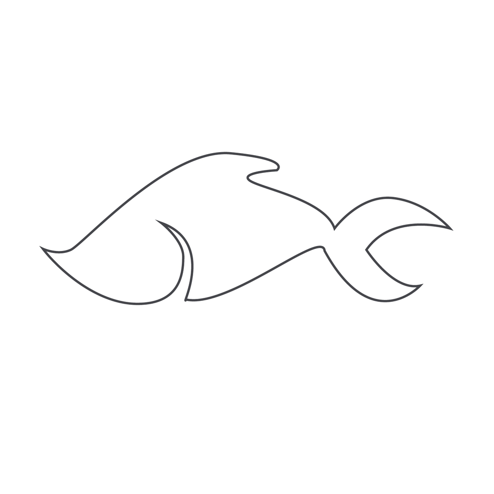 Fish132.jpg
