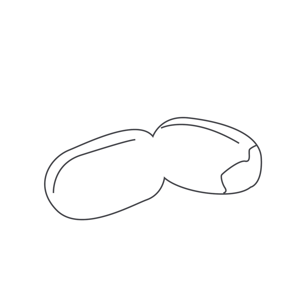 nut-Icon.jpg