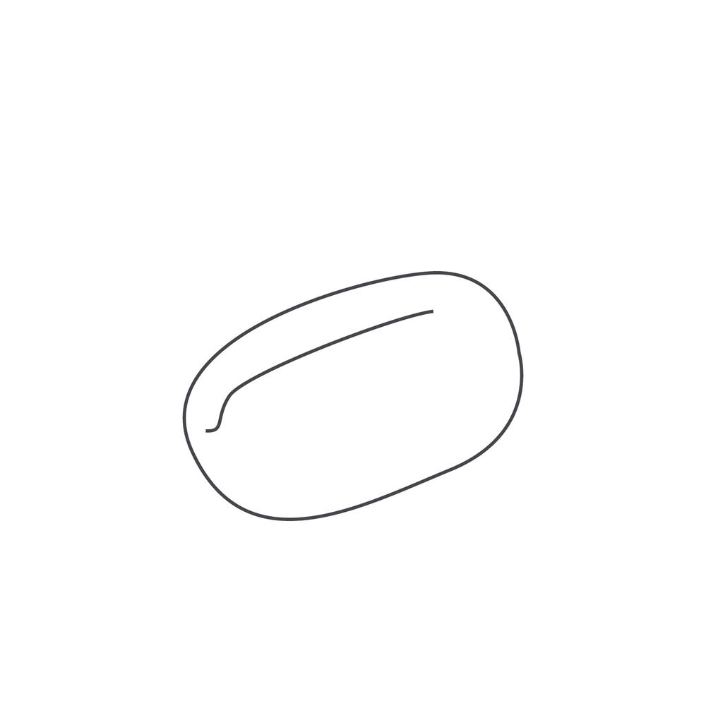 nut-Icon2.jpg