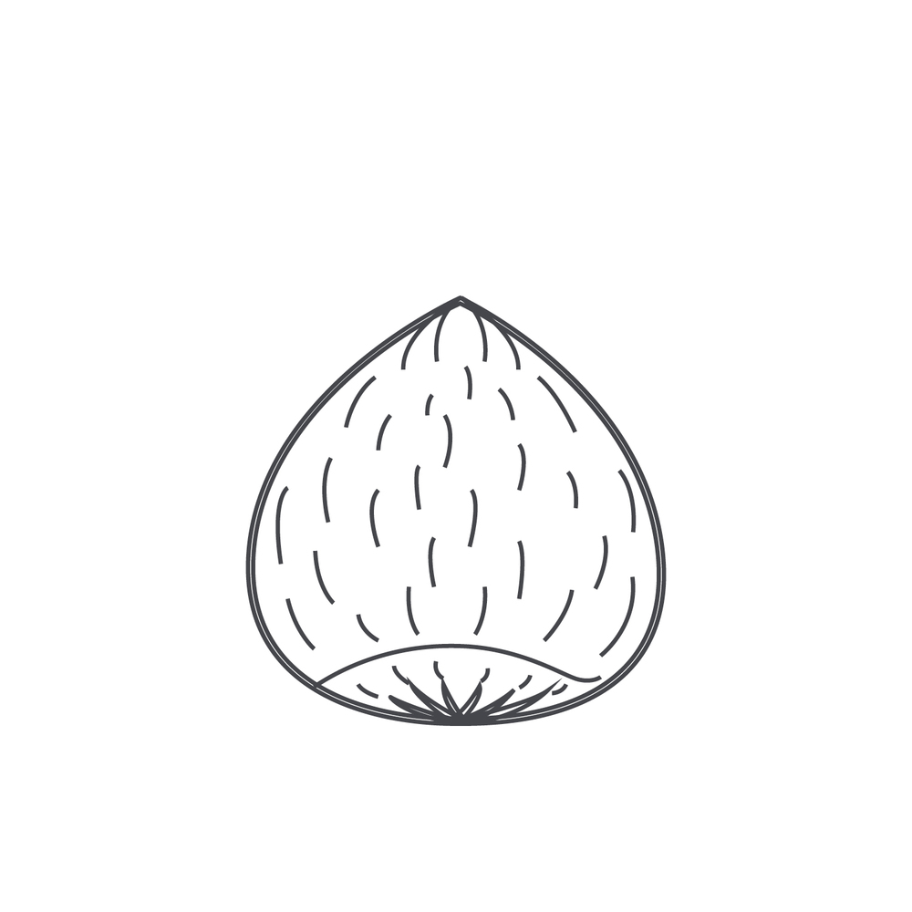 nut-Icon7.jpg