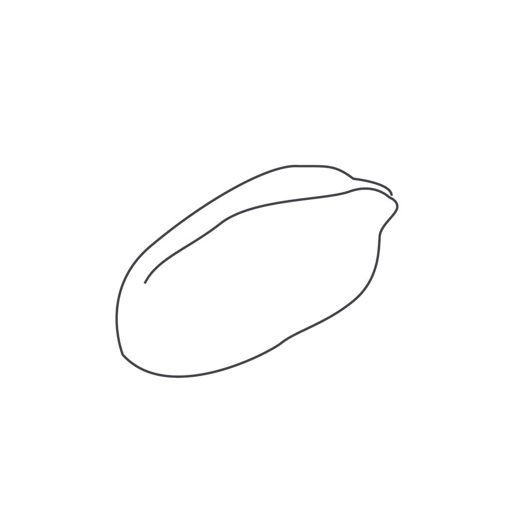 nut-Icon8.jpg