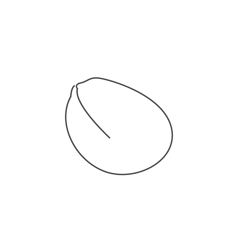 nut-Icon21.jpg