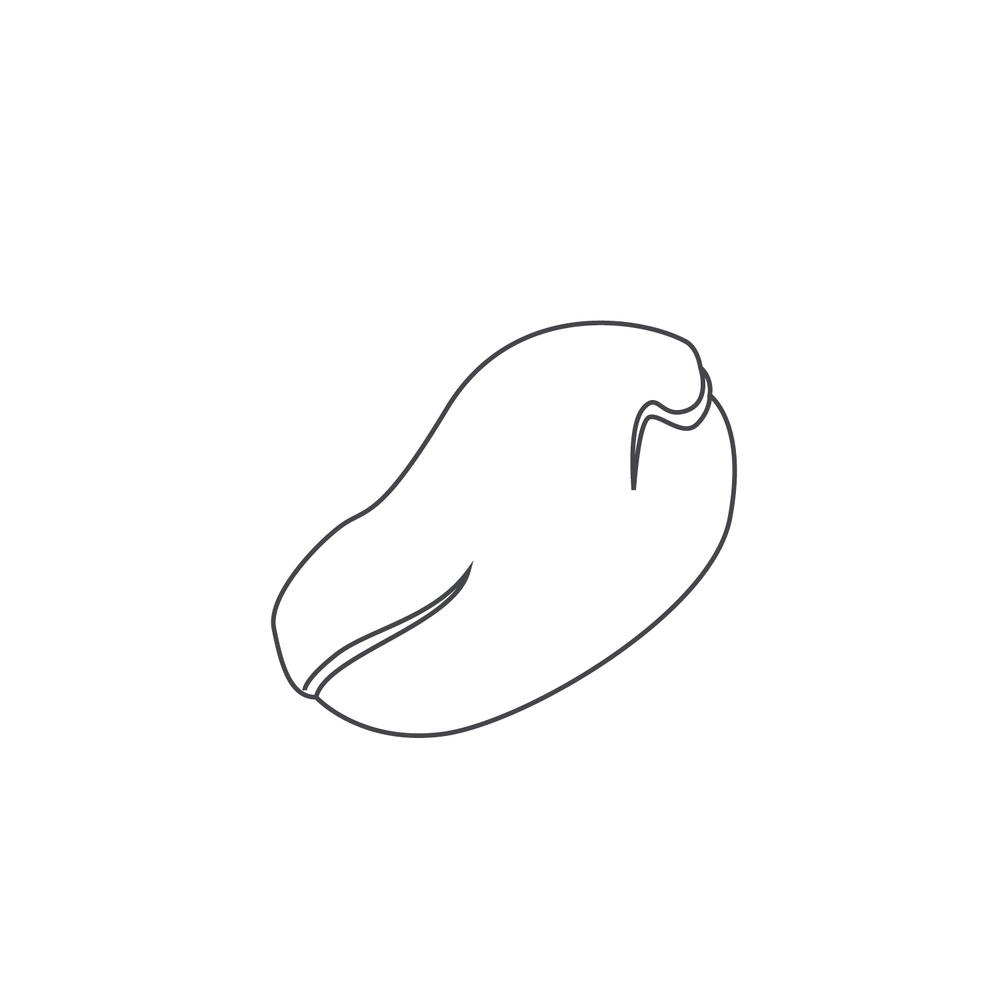 nut-Icon23.jpg