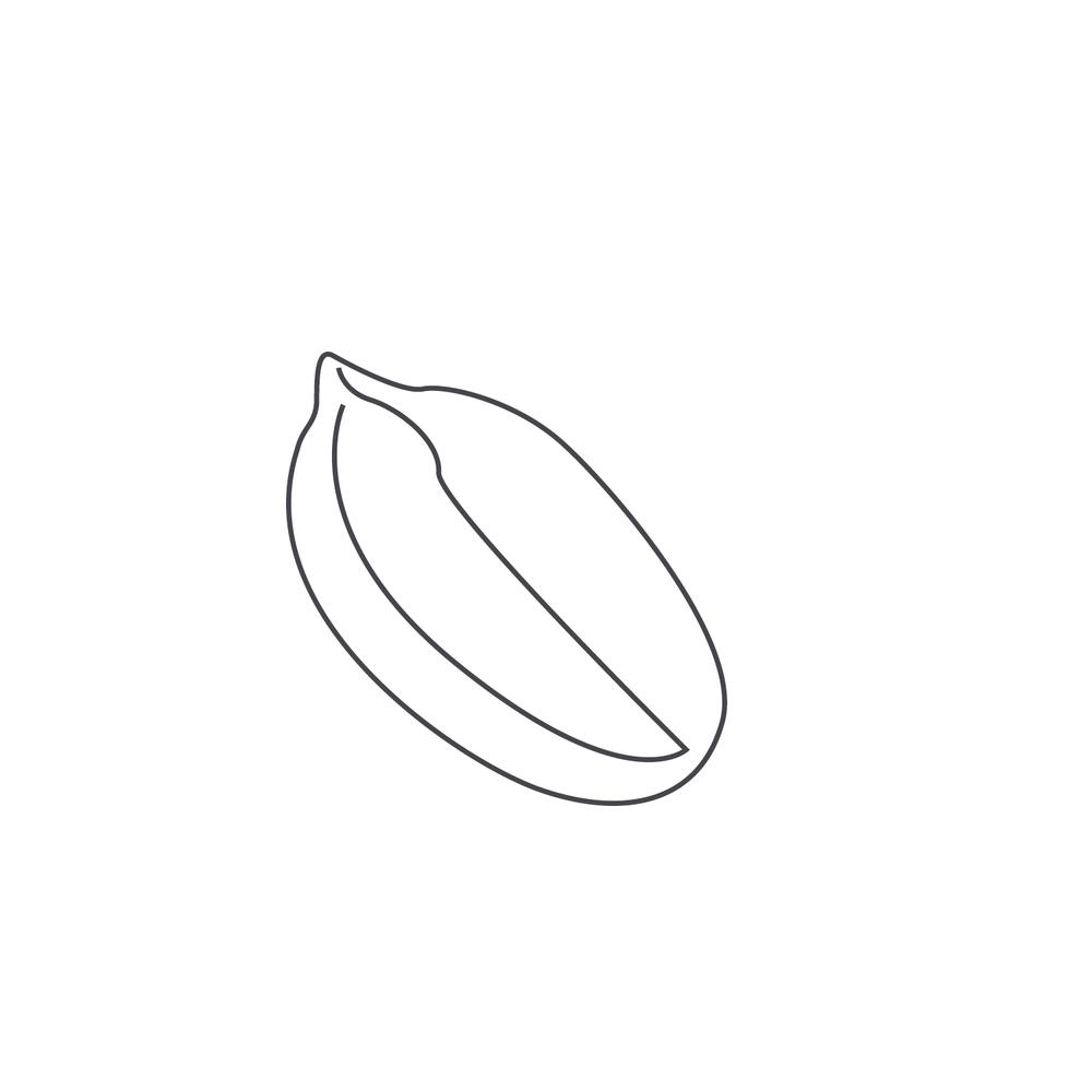 nut-Icon25.jpg
