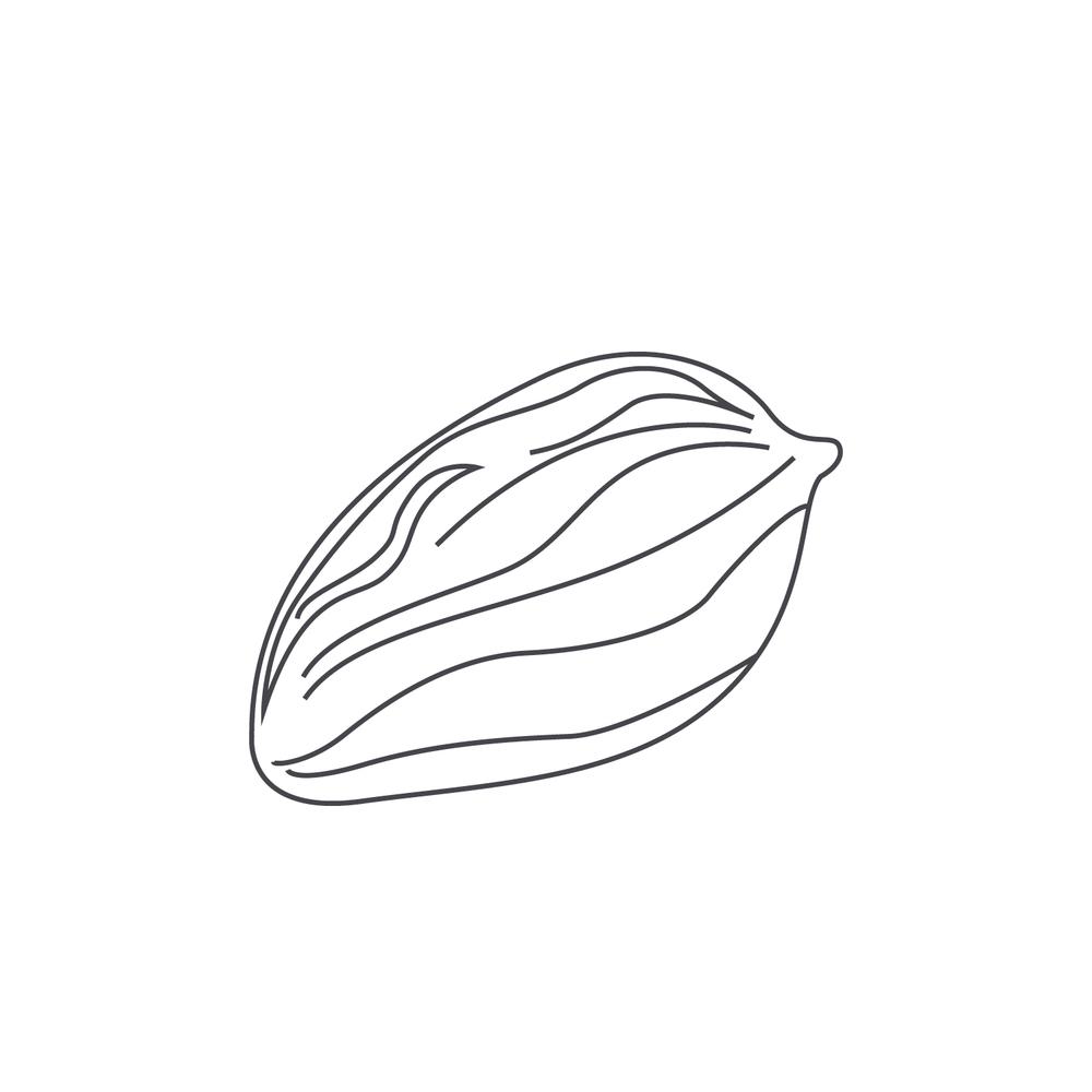 nut-Icon36.jpg