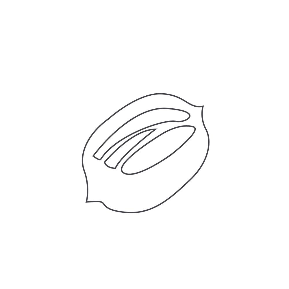 nut-Icon42.jpg
