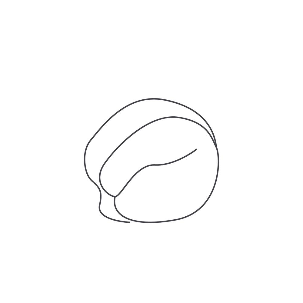 nut-Icon47.jpg