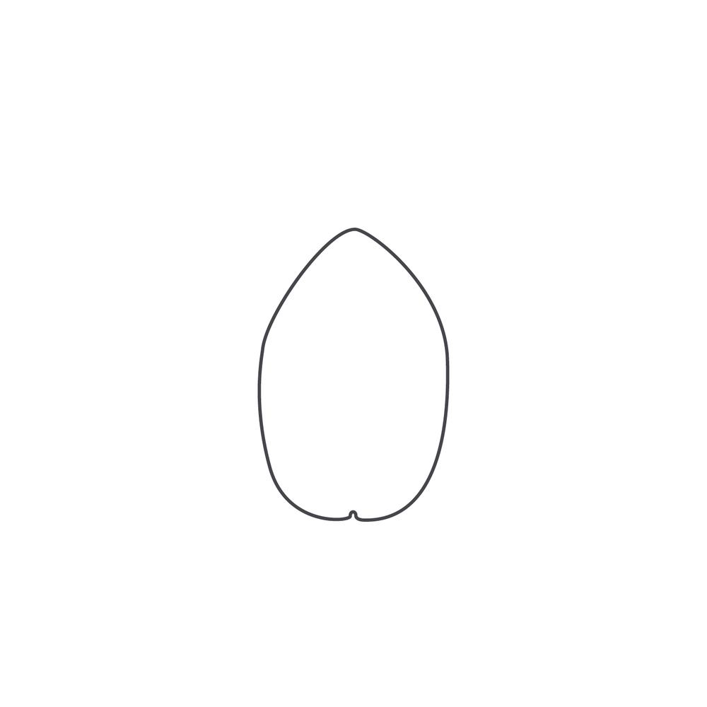 nut-Icon56.jpg