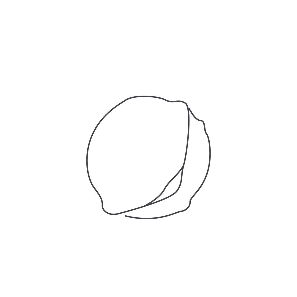 nut-Icon70.jpg