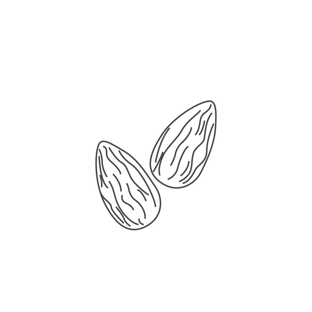 nut-Icon74.jpg