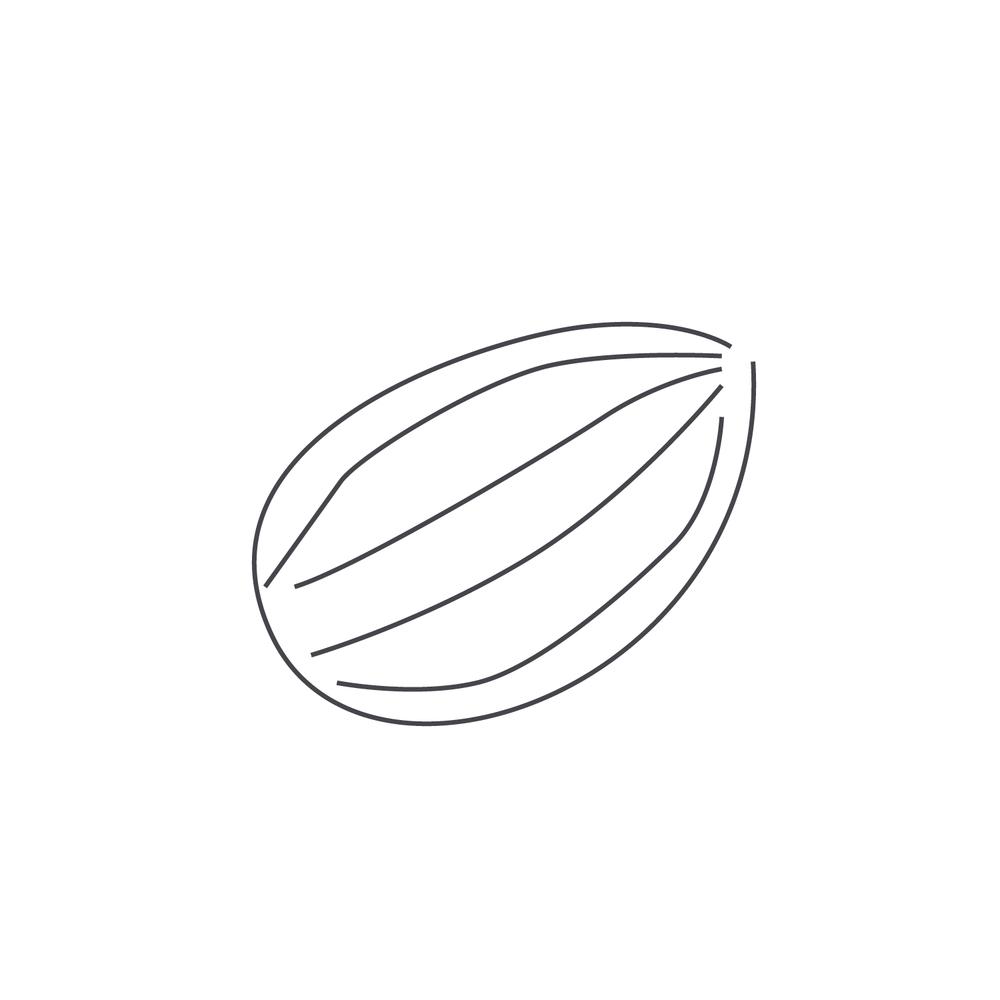 nut-Icon76.jpg