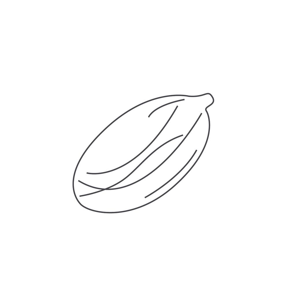 nut-Icon87.jpg