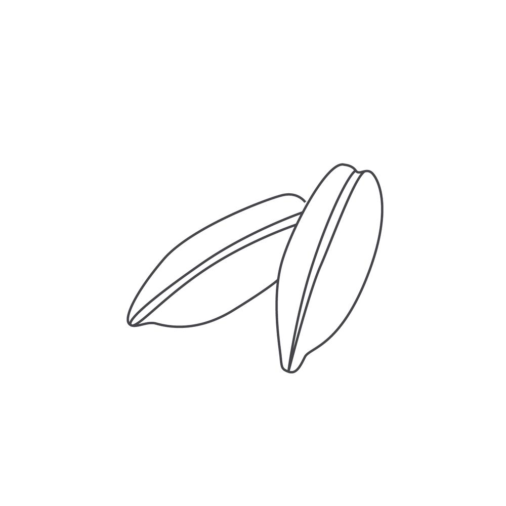 nut-Icon90.jpg