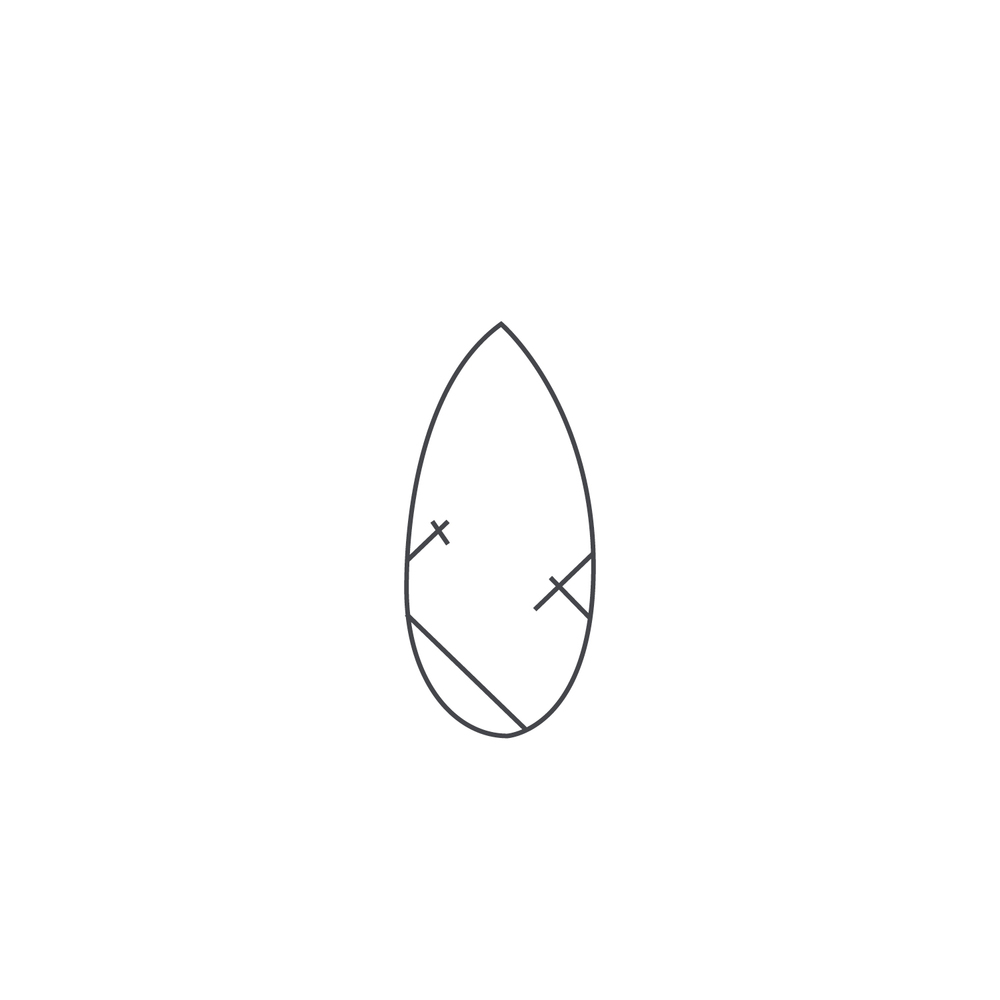 nut-Icon93.jpg