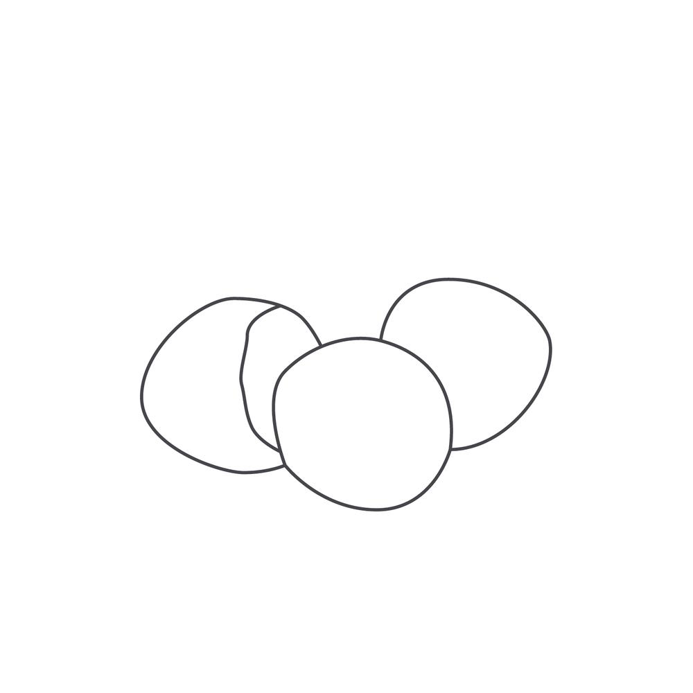 nut-Icon94.jpg