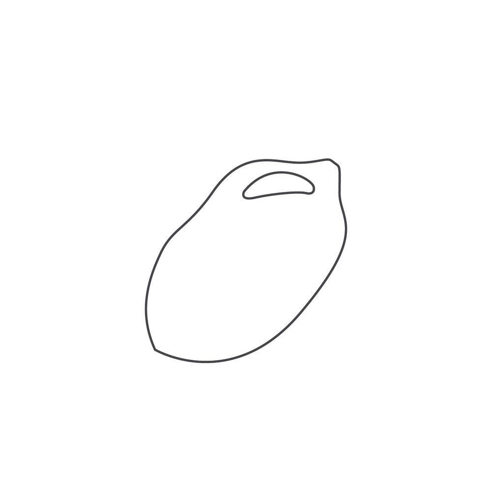 nut-Icon101.jpg