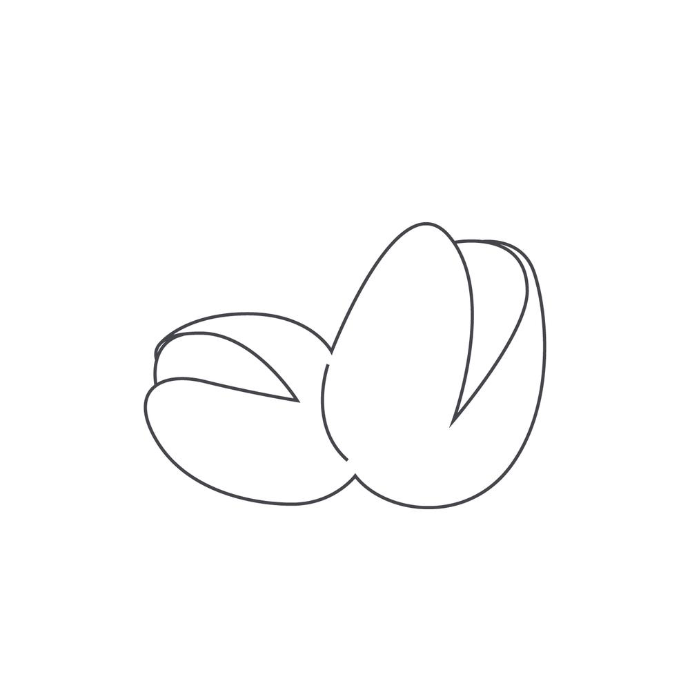 nut-Icon104.jpg