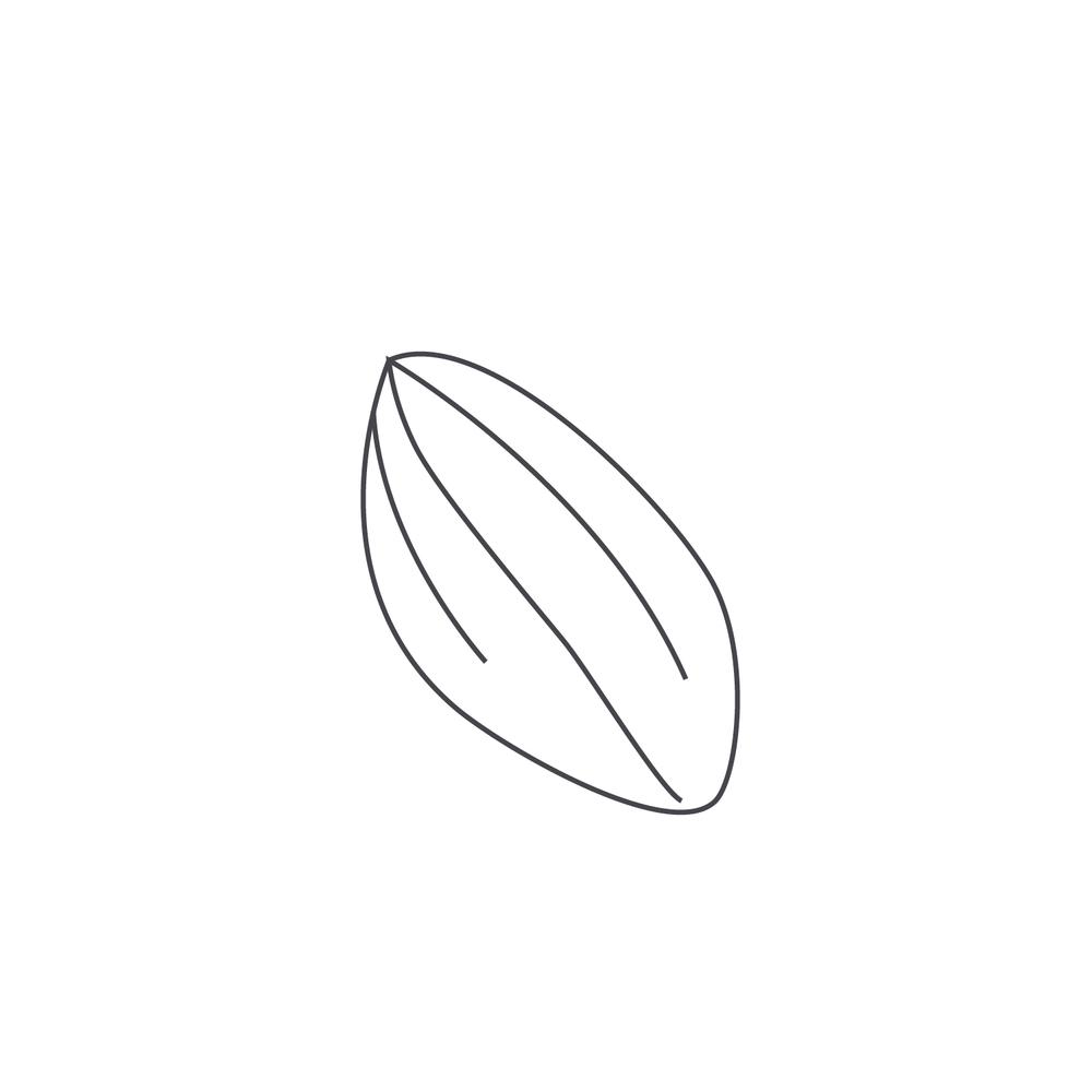nut-Icon118.jpg