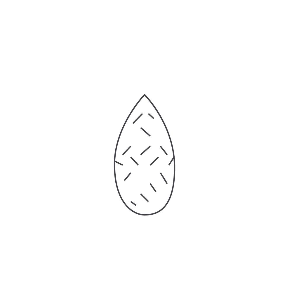 nut-Icon145.jpg