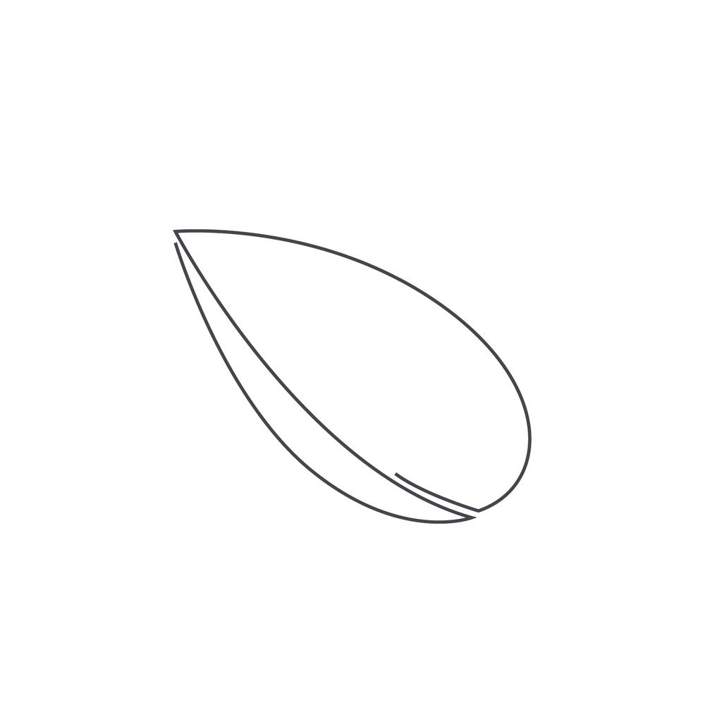 nut-Icon153.jpg