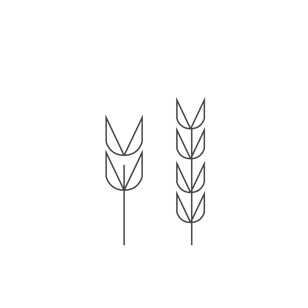 Wheat-Icon-blog11.jpg