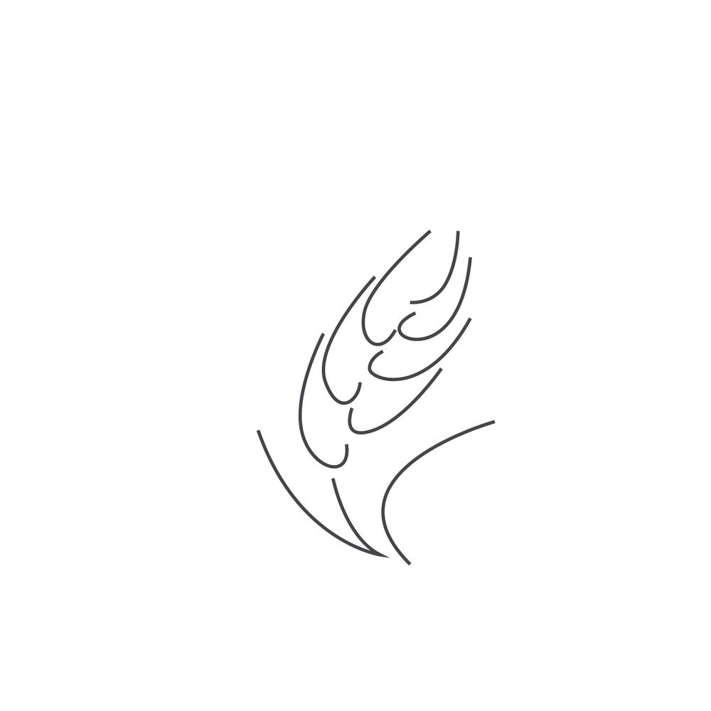 Wheat-Icon-blog43.jpg