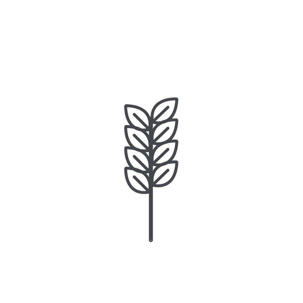 Wheat-Icon-blog69.jpg