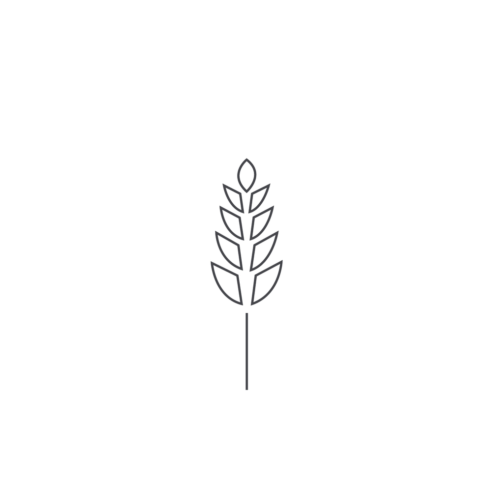Wheat-Icon-blog72.jpg