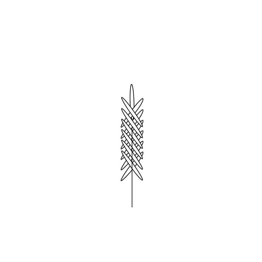 Wheat-Icon-blog85.jpg