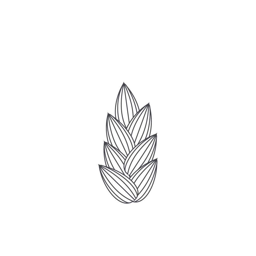 Wheat-Icon-blog98.jpg
