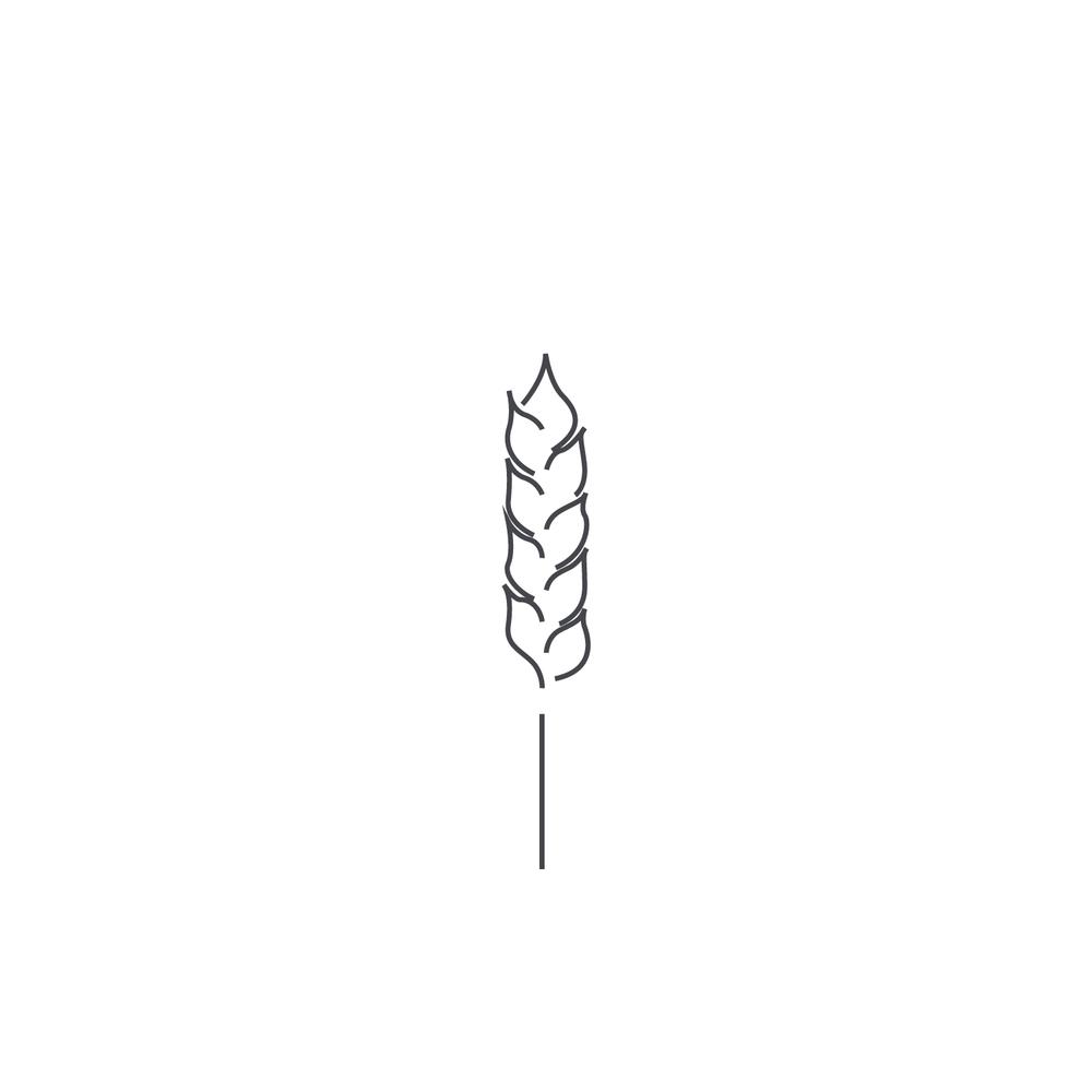 Wheat-Icon-blog131.jpg