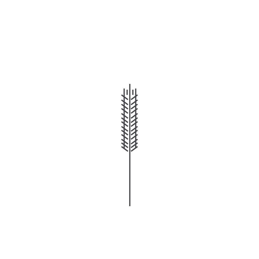 Wheat-Icon-blog140.jpg