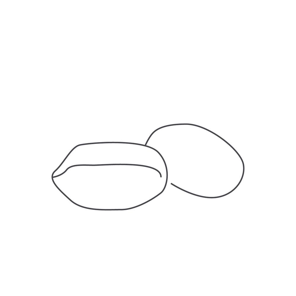 nut-Icon3.jpg