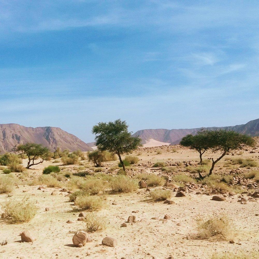 wadi-rum-multi-day-tours-isolation.jpg