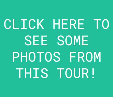 Wadi Rum Nature Tours Jeep Tour Photos