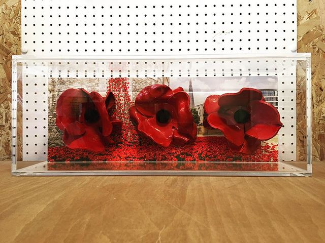 Poppies from 'Blood Swept Lands and Sea of Red', Paul Cummings, 2014