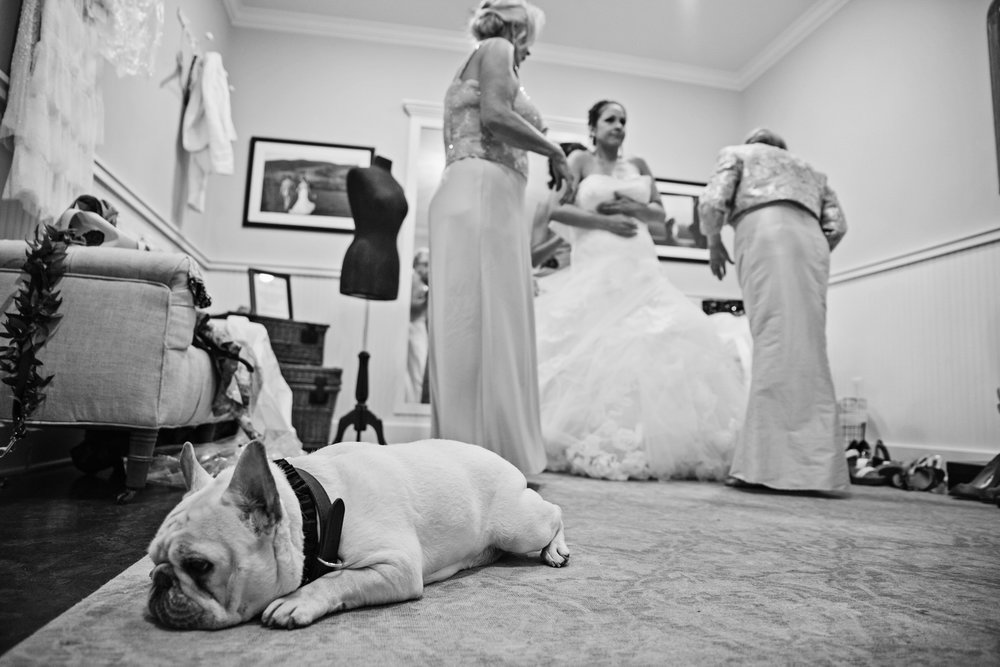 KingFamilyVineyardWedding-GettingReady-209.jpg